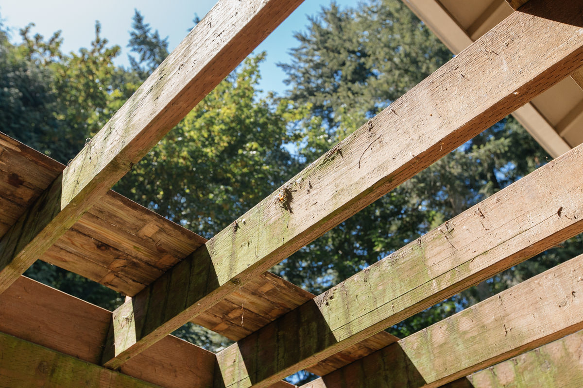 inspect deck framing