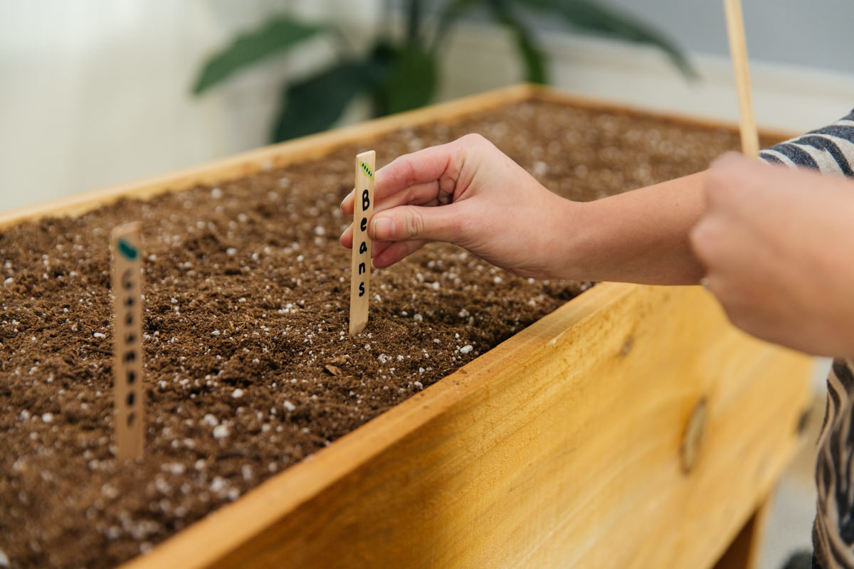 add plant seeds to the finished planter