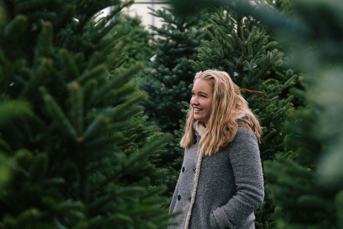 Christmas tree tips