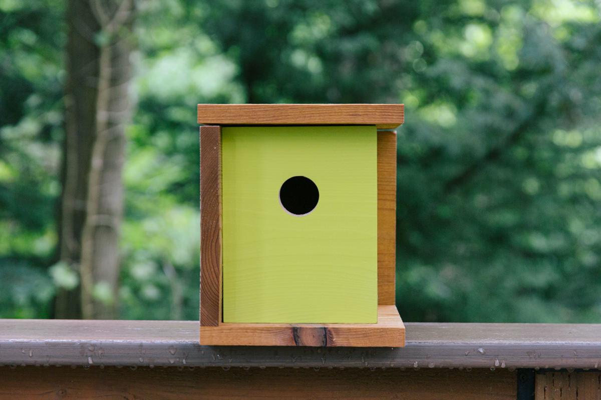 Diy Birdhouse 4