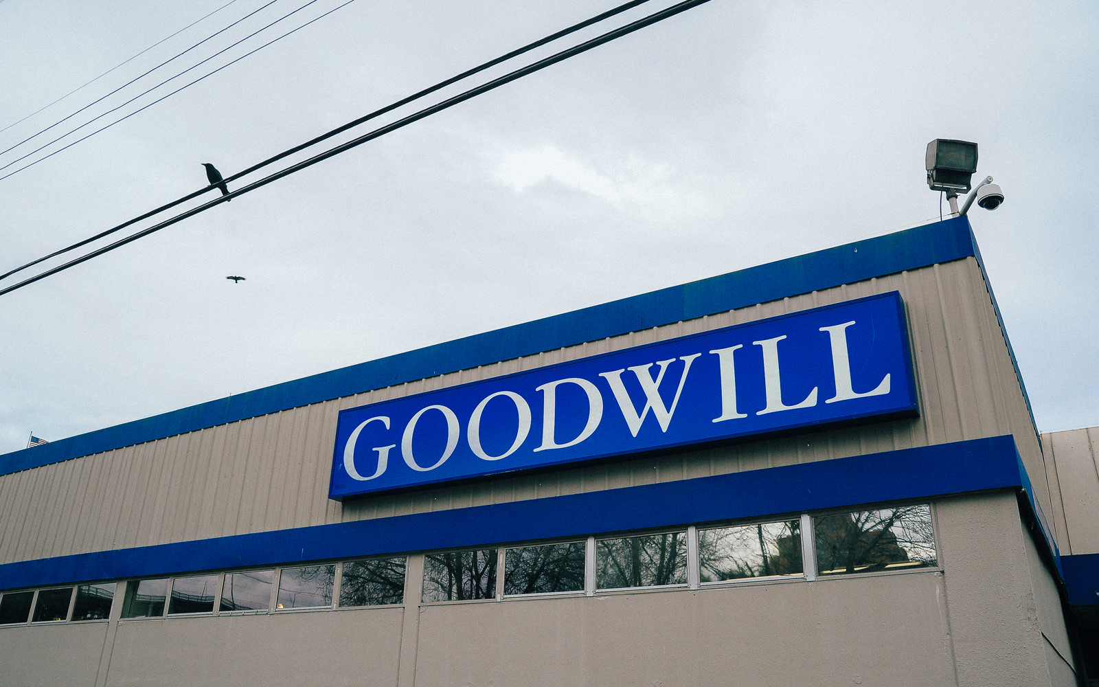 DunnDIY-GoodwillShopping-SeattleWA-4