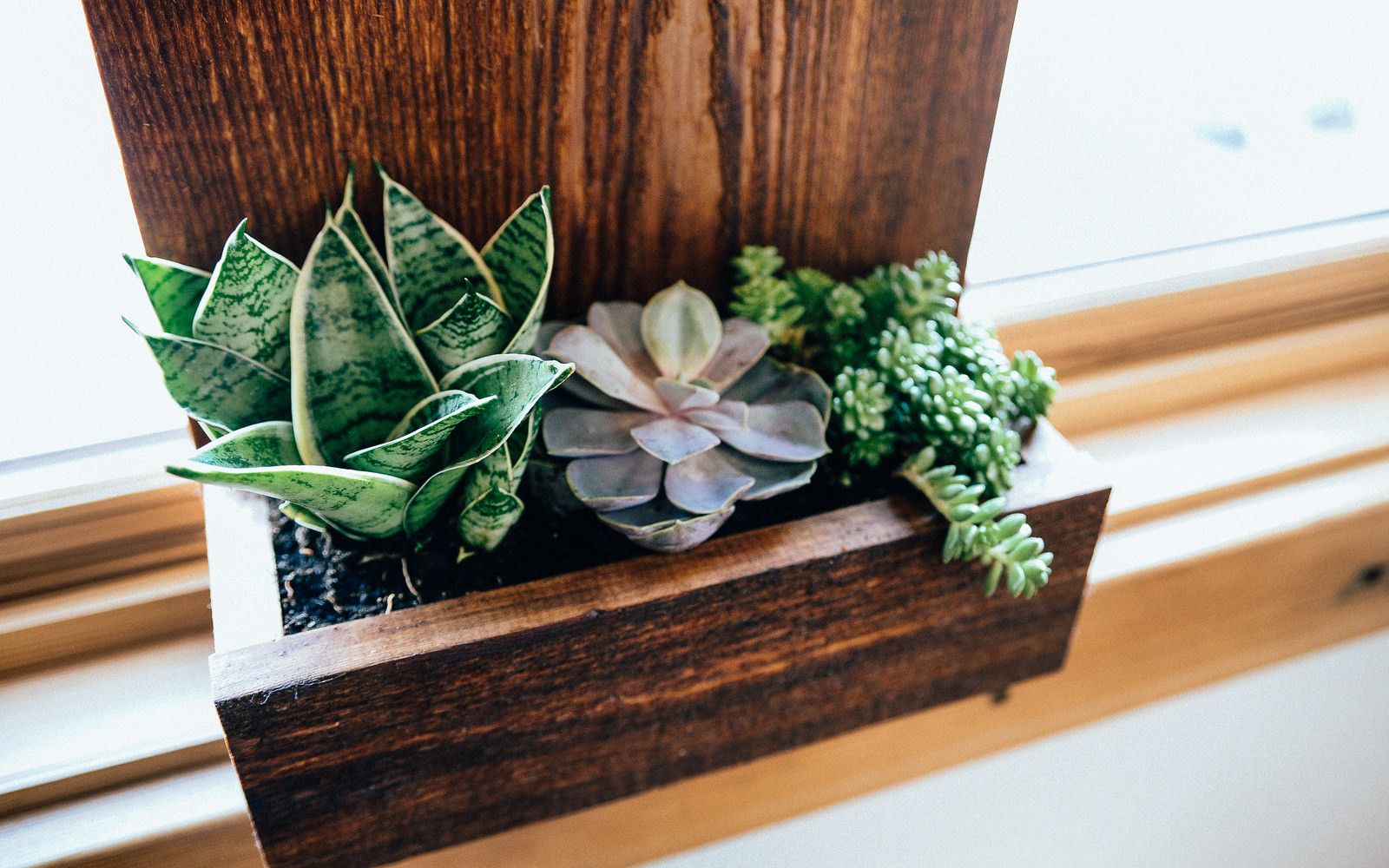 DunnDIY-SeattleWA-AddressNumberWallPlanter-17