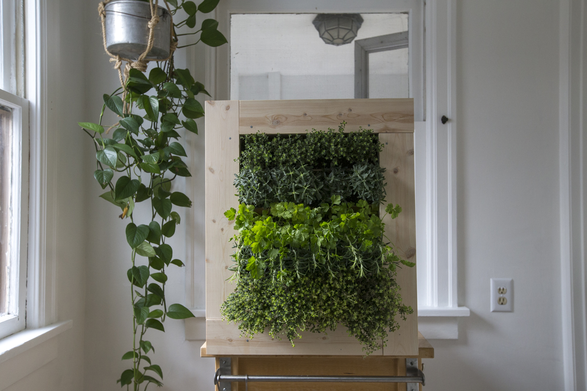 How To Make A Herb Wall Planter Home Improvement Projects To