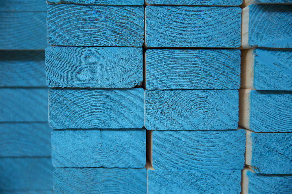 Dunn Lumber High Quality Lumber the Story Behind Our Signature Blue-End Studs Seattle WA 2