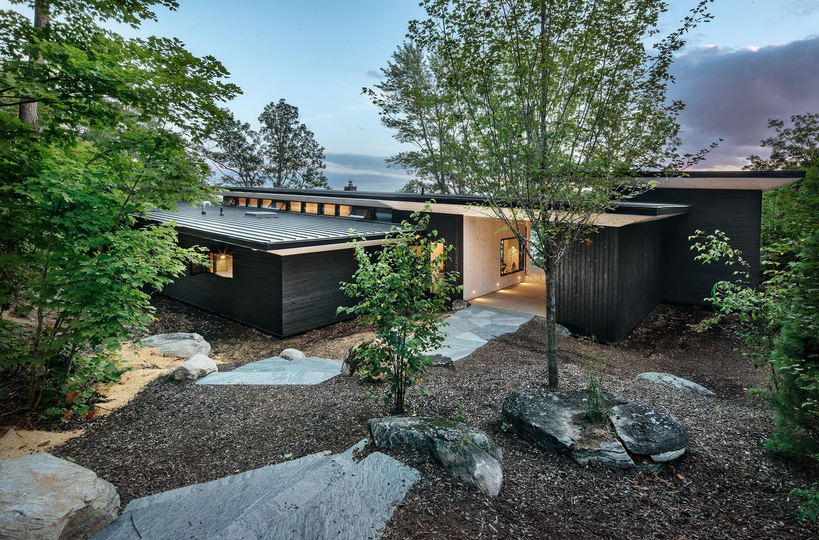 The home's three low-lying rooflines subtly emerge from the landscape.