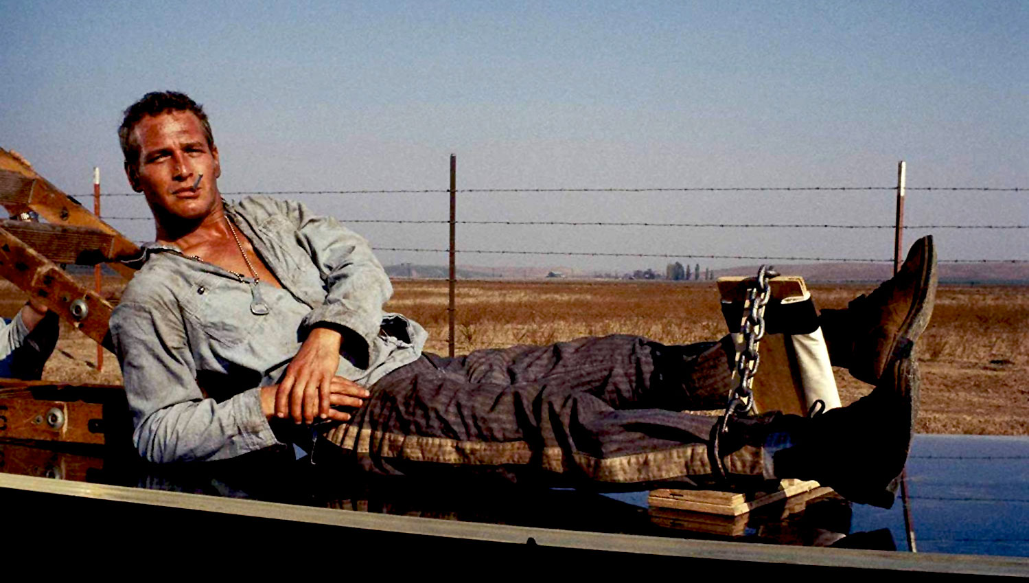 Paul Newman defiant in <em>Cool Hand Luke</em>