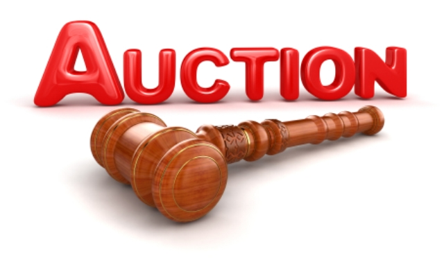 Your First Auction? Make It A Success!