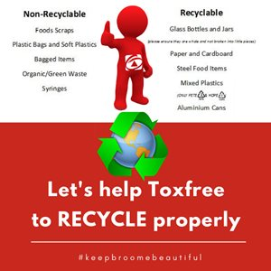 Tox Free Christmas Wish for Recycling