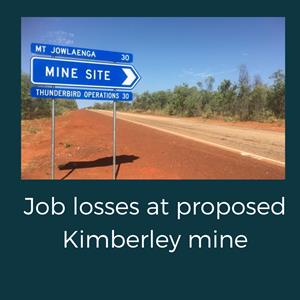 Coronavirus and Chinese slowdown lead to job losses at proposed Kimberley mine
