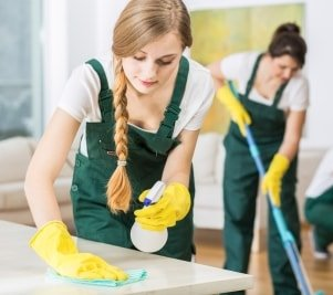 Property Cleaning Checklist