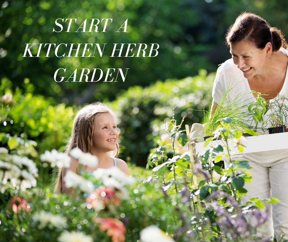 Start A Kitchen Herb Garden