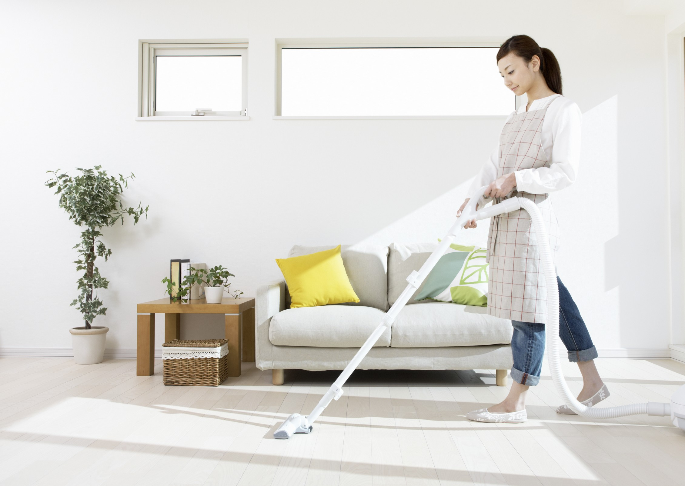 THE RENTER'S GUIDE TO END-OF-LEASE CLEANING