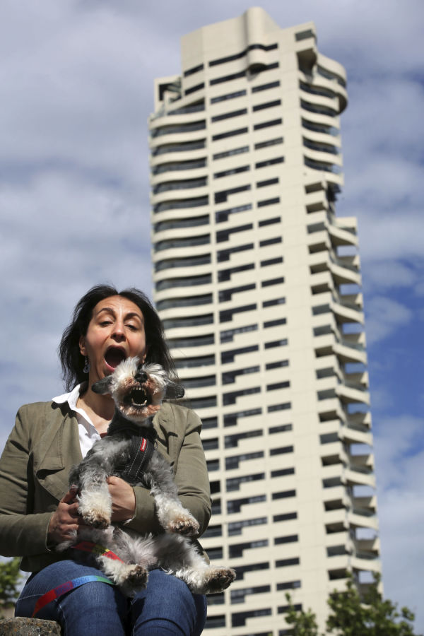 PETS ARE NOW ALLOWED IN SYDNEY APARTMENTS
