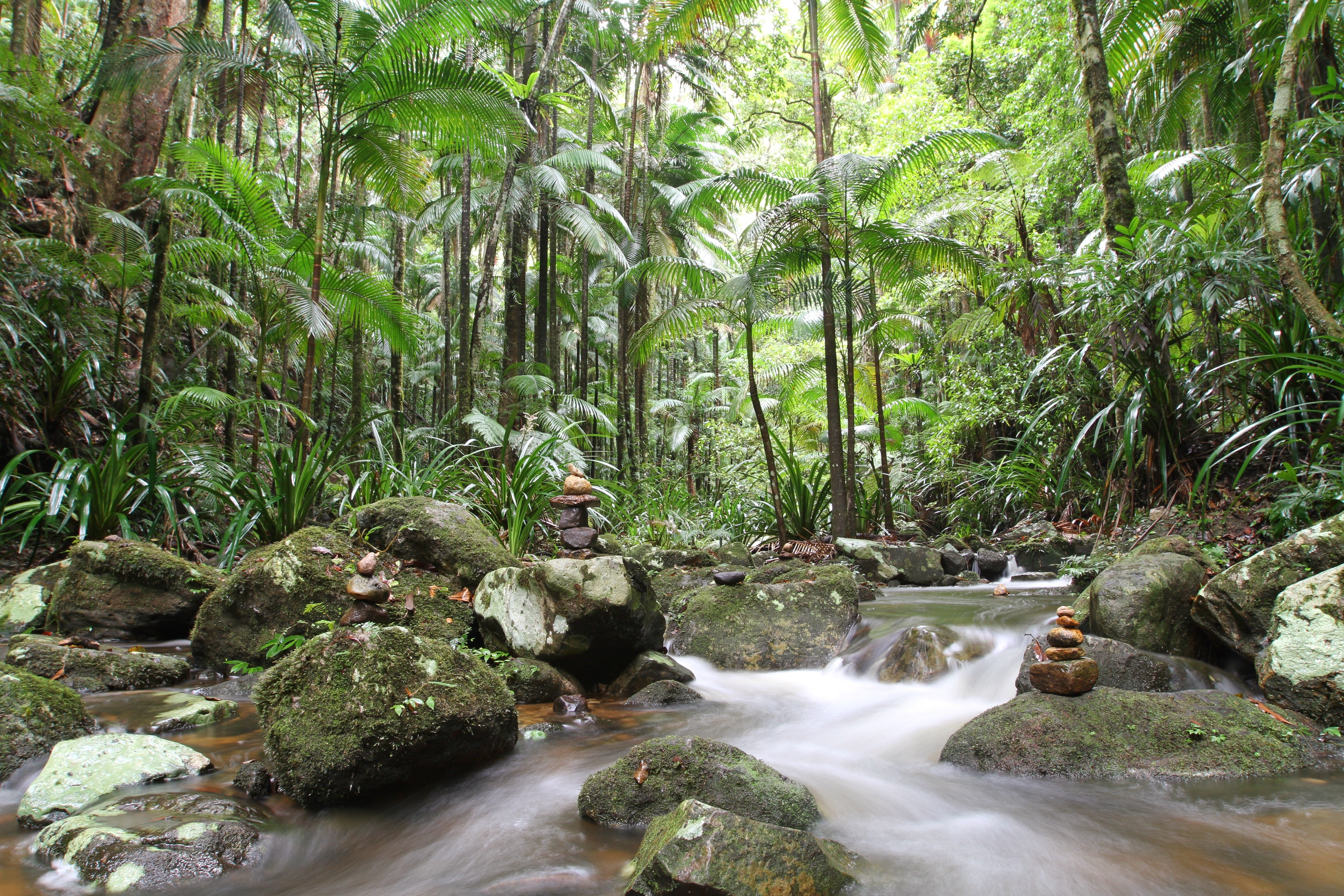 Our Guide to Byron Bay's Hinterland
