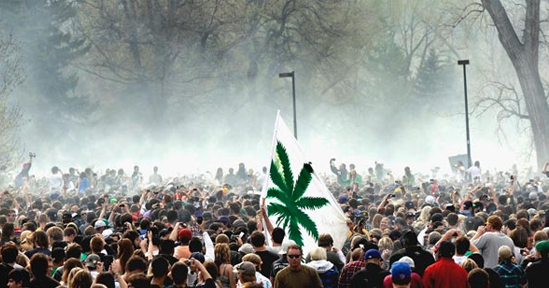 free marijuana trump inauguration