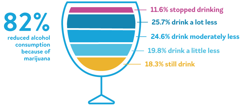 Image of graph showing that 82% 82% of people surveyed said that using marijuana has caused them to reduce their alcohol intake.