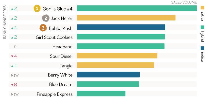 Image of graph showing which marijuana strains were the most popular in 2016. The most popular strain was Gorilla Glue #4 followed by Jack Herer and Bubba Kush.