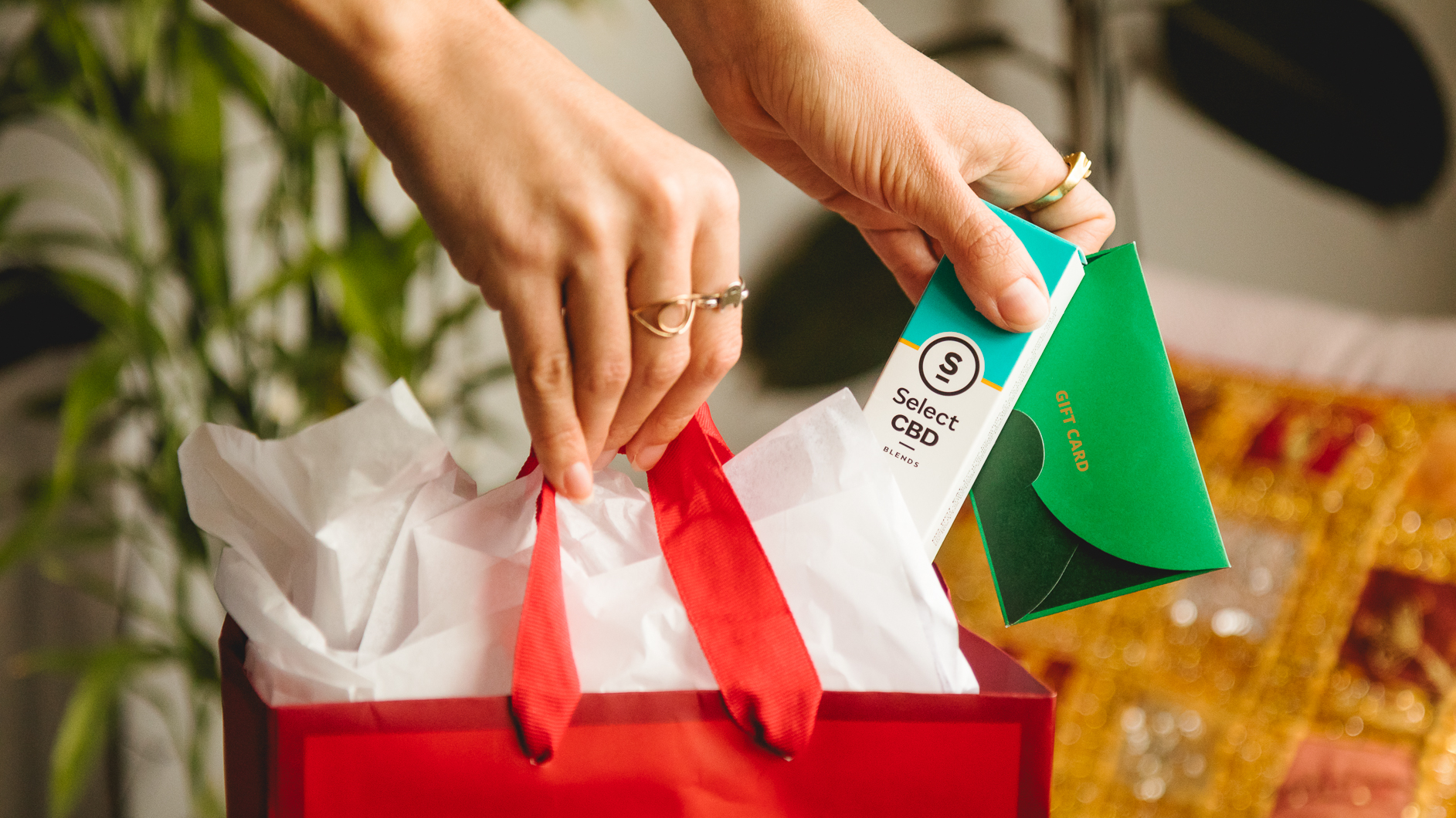 Image of someone placing a gift card and a Focus CBD Peppermint vaporizer into a gift bag.