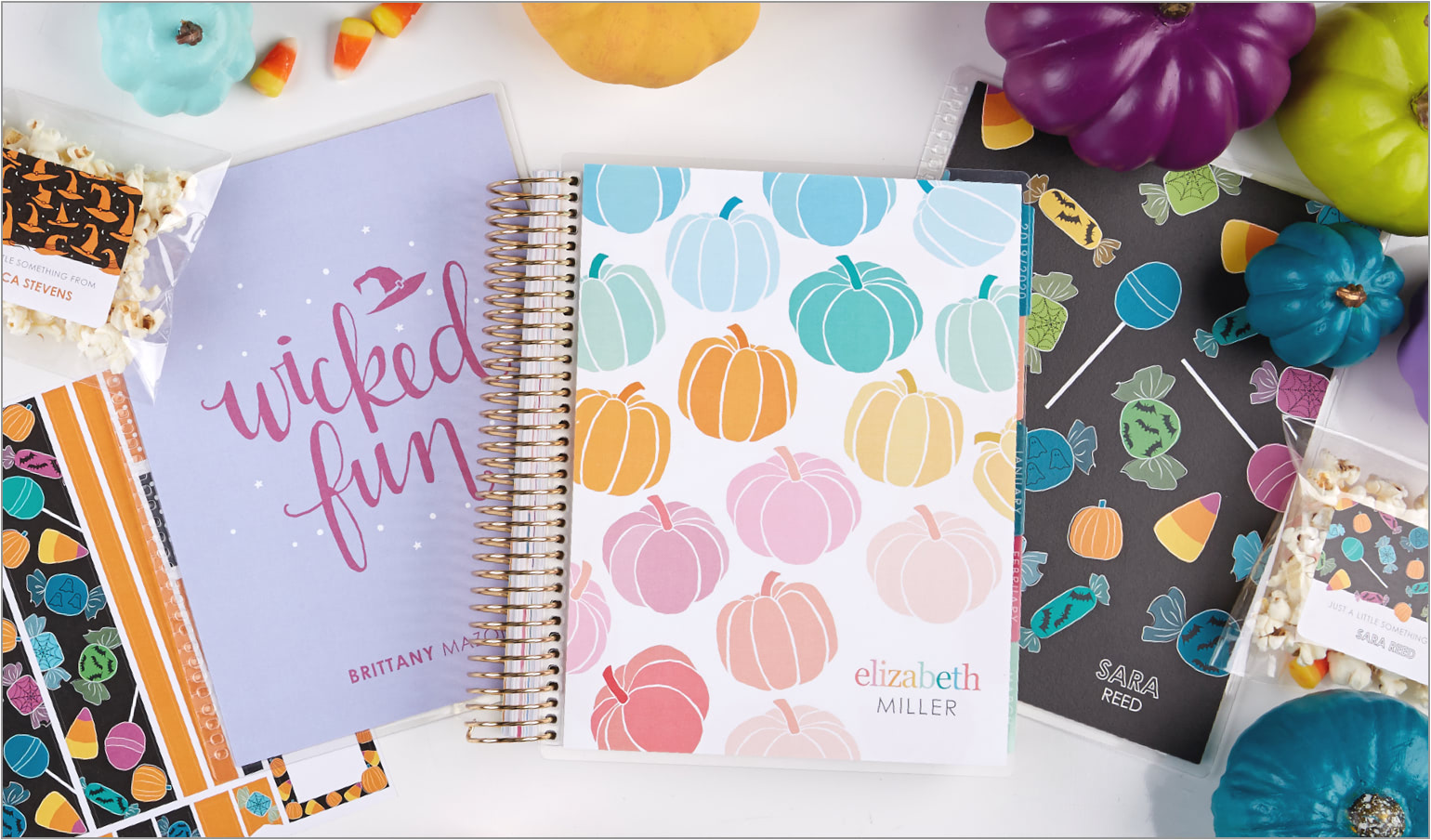 image about Day Designer for Target referred to as Planners, Notebooks, Magazines and Stationery Erin Condren