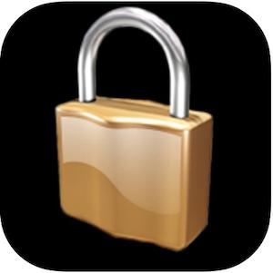 Segurança e organização virtual