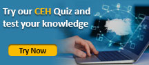 Try our ECSA Quiz and test your knowledge