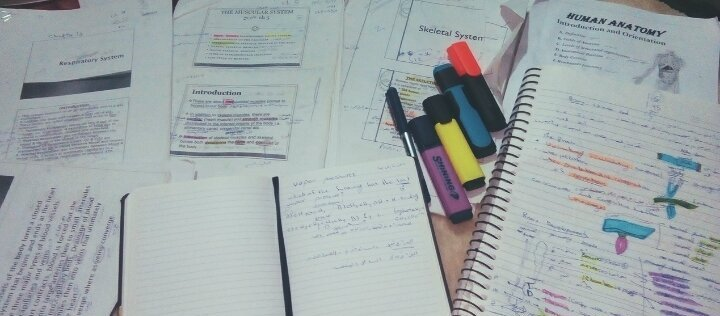 Through my studies for the final exam in anatomy 💚💊💉