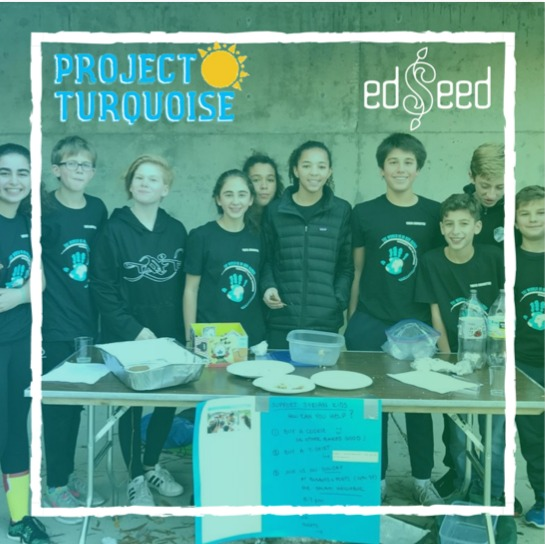 Project Turquoise