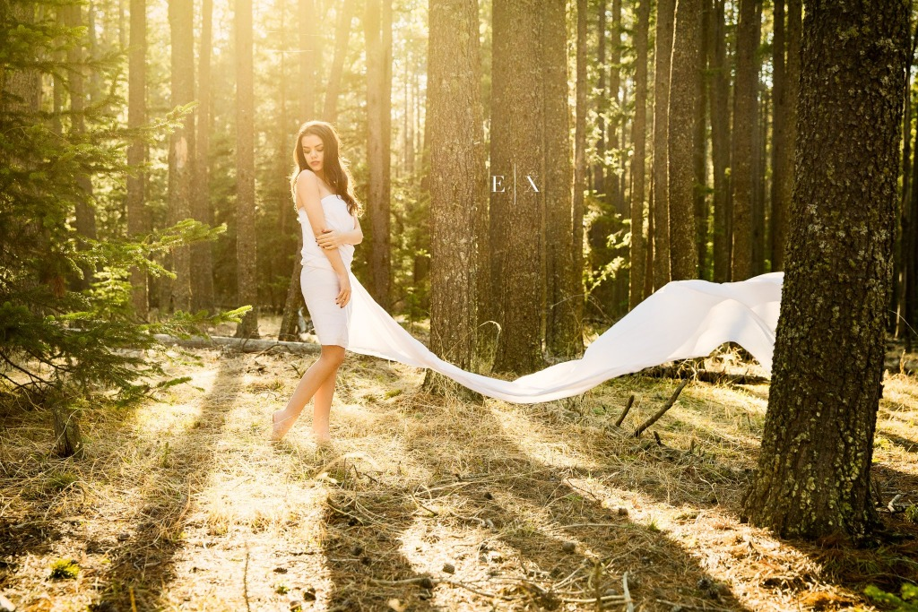 Flowing Forests | Elegant Exposures Photography