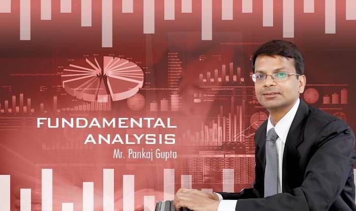 Investment Strategies using Fundamental Analysis