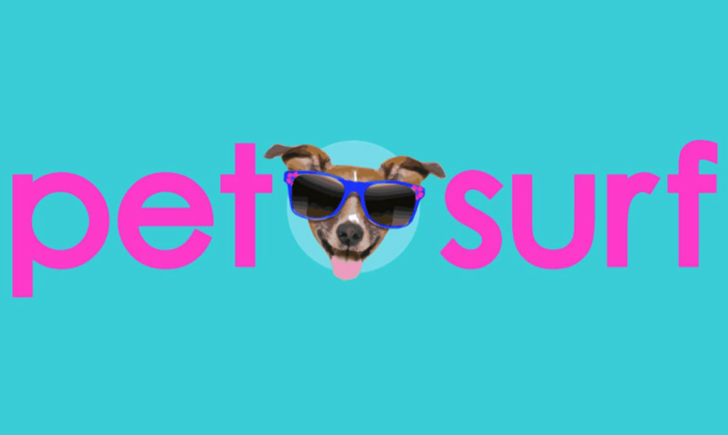 Elevate Blue- Pet Surf Startup- Pet Boarding
