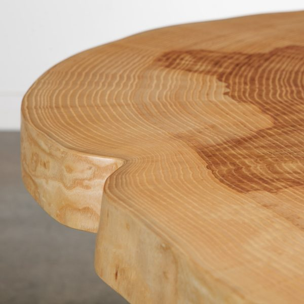 ash-table-tree-rings-detail