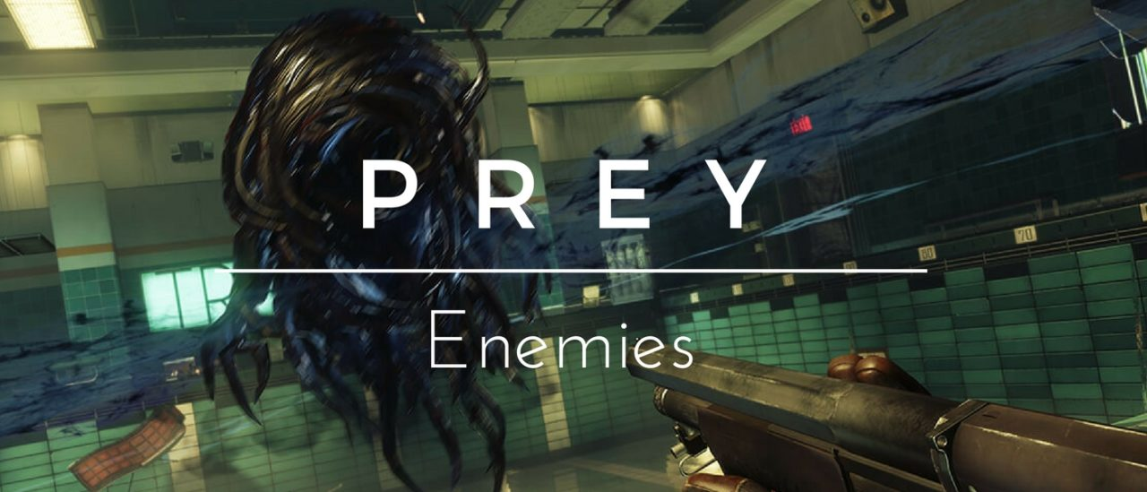 the profile of the enemy If you know that your enemy uses weapons which deal a particular damage type,  npc damage types  just like player ships, npc ships (rats).