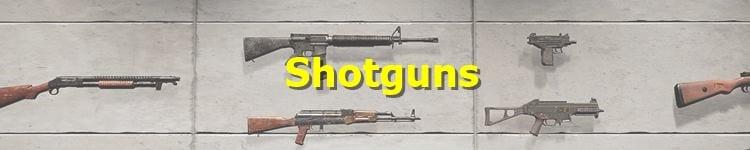 PUBG Shotguns
