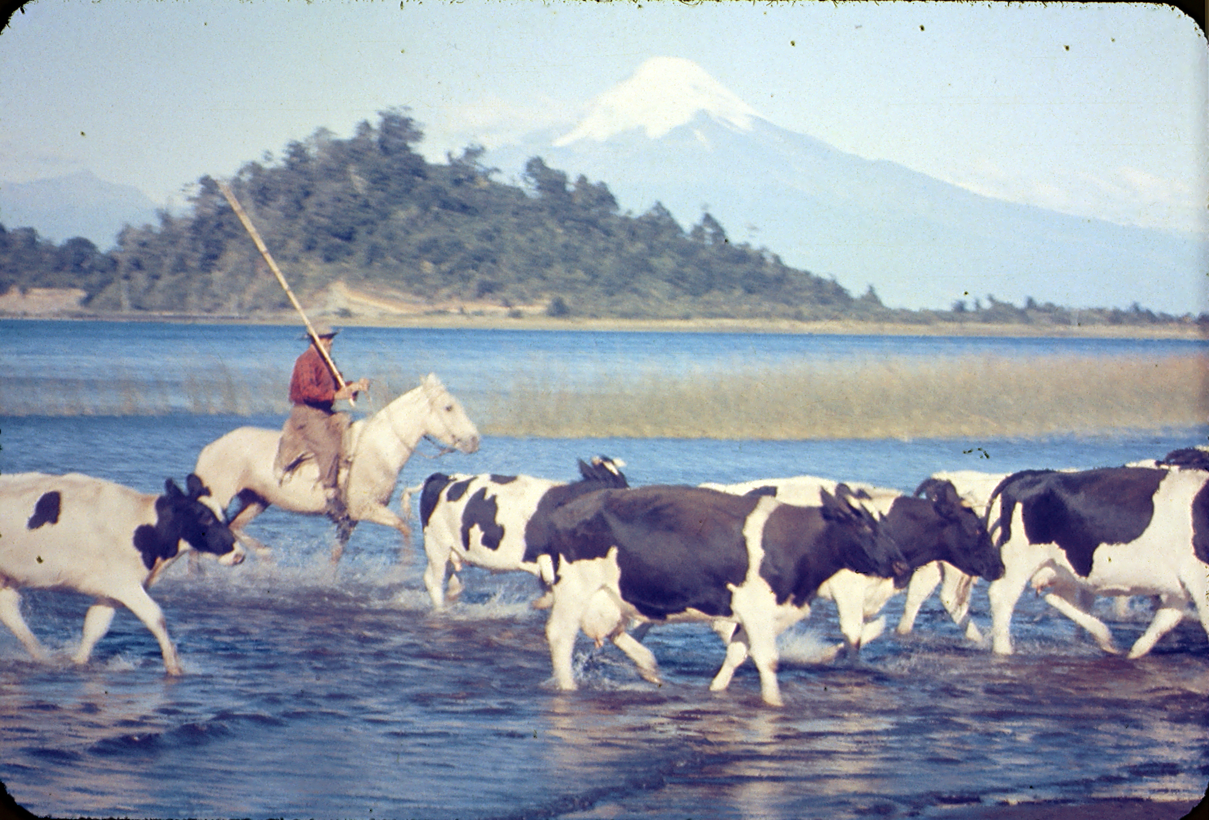 Enterreno - Fotos históricas de chile - fotos antiguas de Chile - Lago Llanquihue, años 60s.