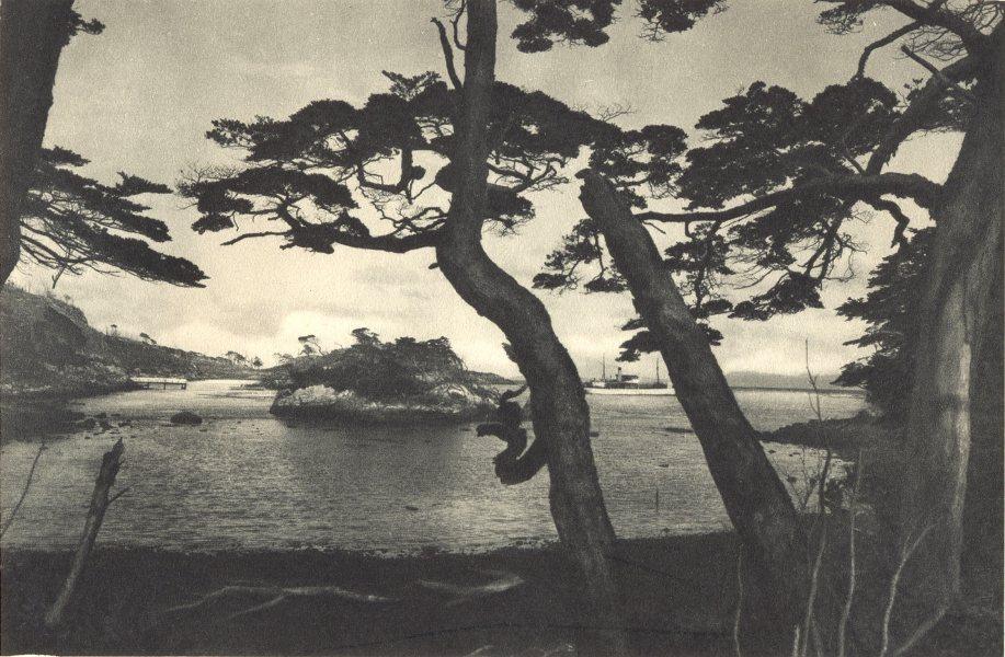Enterreno - Fotos históricas de chile - fotos antiguas de Chile - Isla Picton en 1932