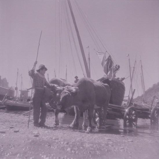 Enterreno - Fotos históricas de chile - fotos antiguas de Chile - Caleta Angelmó en los 40s