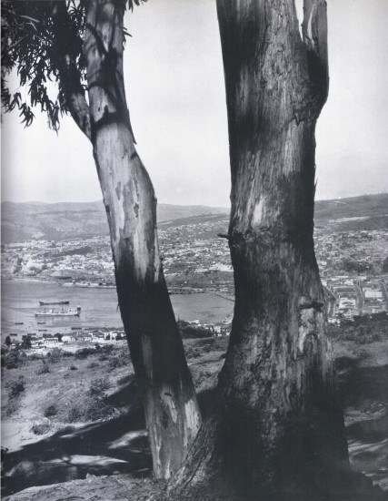 Enterreno - Fotos históricas de chile - fotos antiguas de Chile - Vista Valparaiso 1959