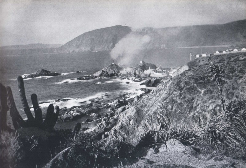 Enterreno - Fotos históricas de chile - fotos antiguas de Chile - Quintay 1959