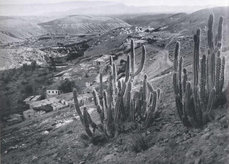Enterreno - Fotos históricas de chile - fotos antiguas de Chile - Mamiña 1959