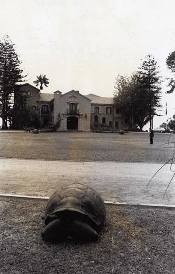Enterreno - Fotos históricas de chile - fotos antiguas de Chile - Palacio Presidencial de Cerro Castillo en los 60s