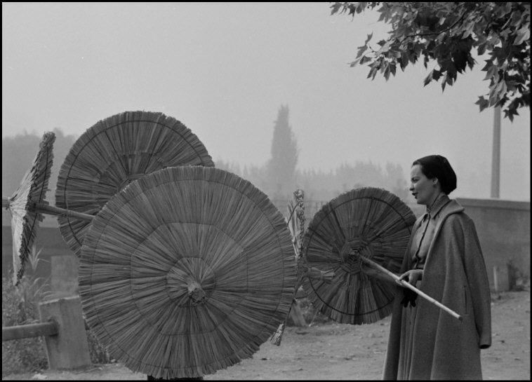 Enterreno - Fotos históricas de chile - fotos antiguas de Chile - Mujer comprando protectores de plantas en 1954