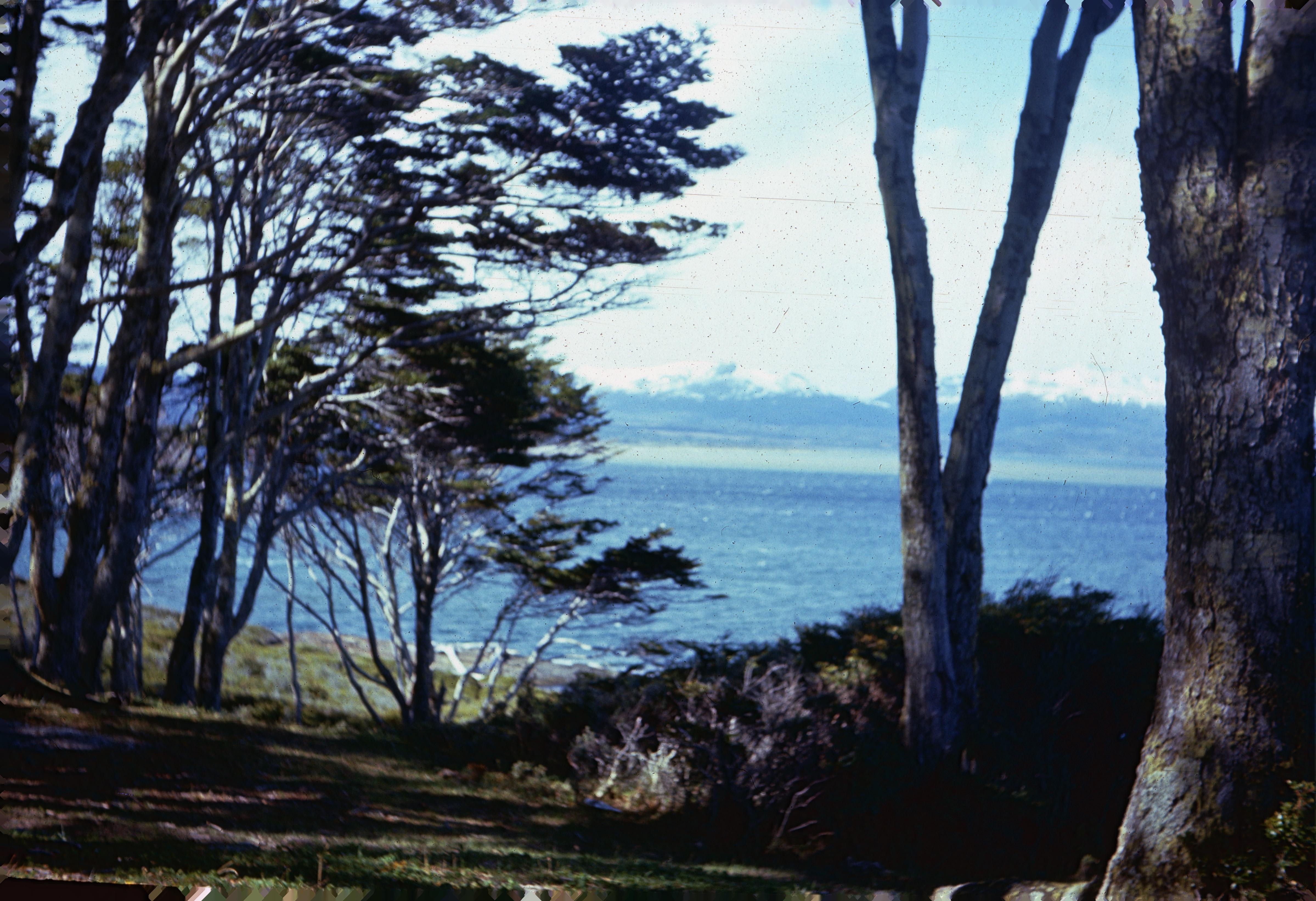 Enterreno - Fotos históricas de chile - fotos antiguas de Chile - Estrecho de Magallanes en 1967