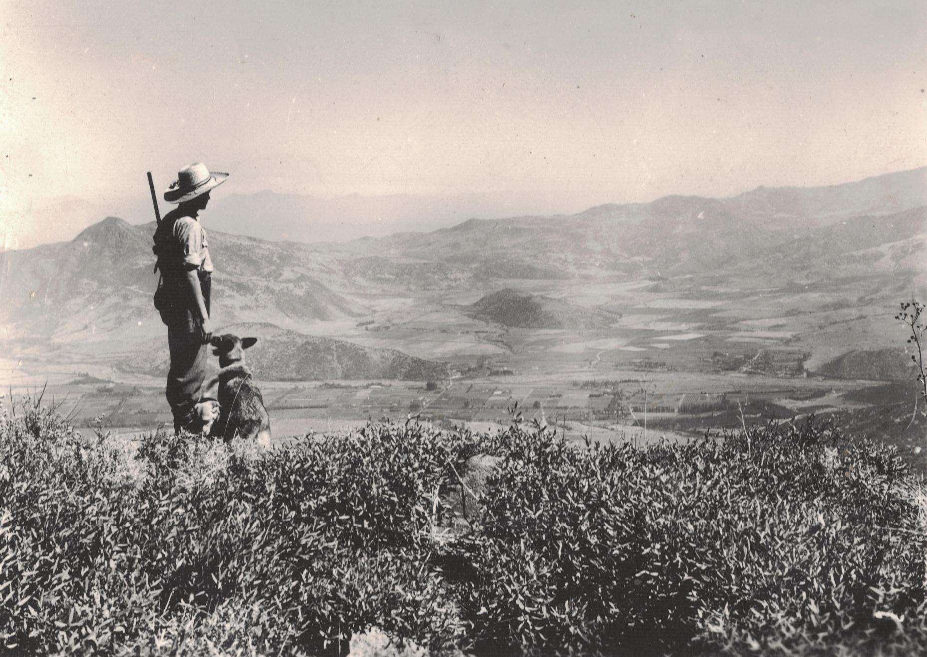 Enterreno - Fotos históricas de chile - fotos antiguas de Chile - Vista desde el Cerro Provincia en 1949