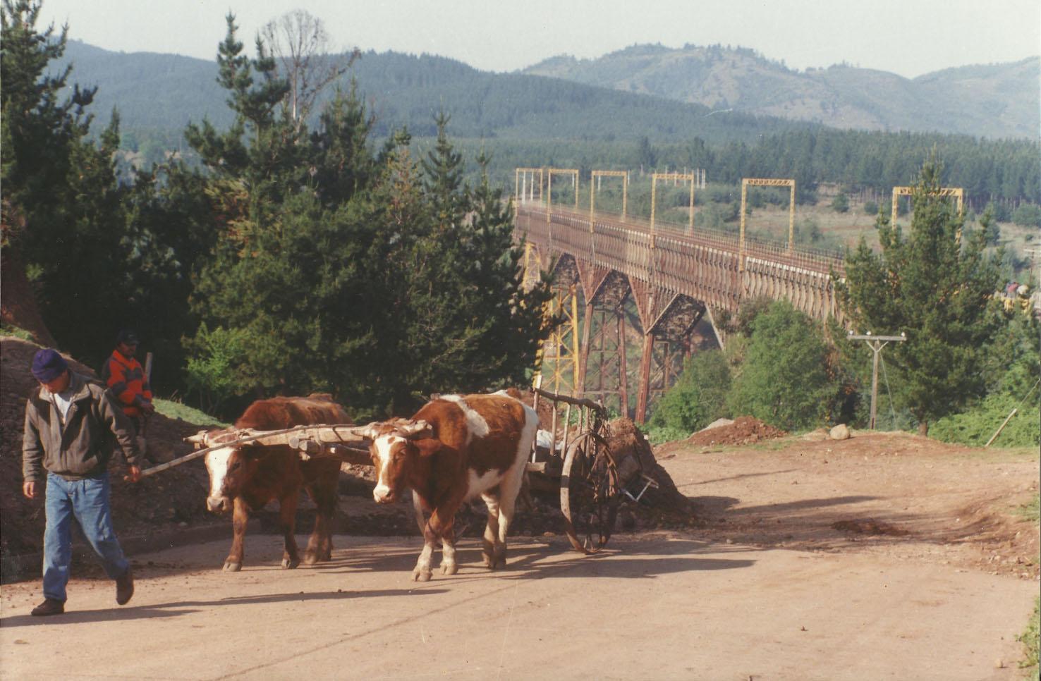 Enterreno - Fotos históricas de chile - fotos antiguas de Chile - Viaducto del Malleco en 1997