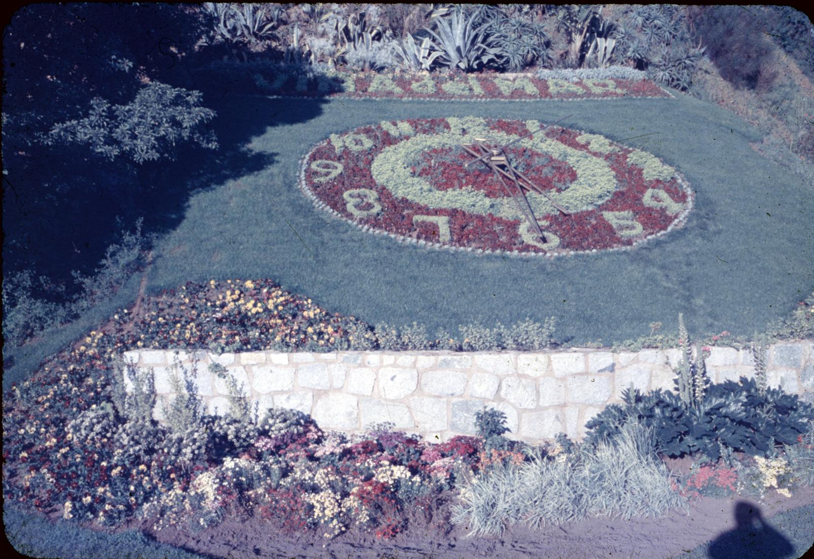 Enterreno - Fotos históricas de chile - fotos antiguas de Chile - Reloj de Flores, Viña del Mar Años 60's