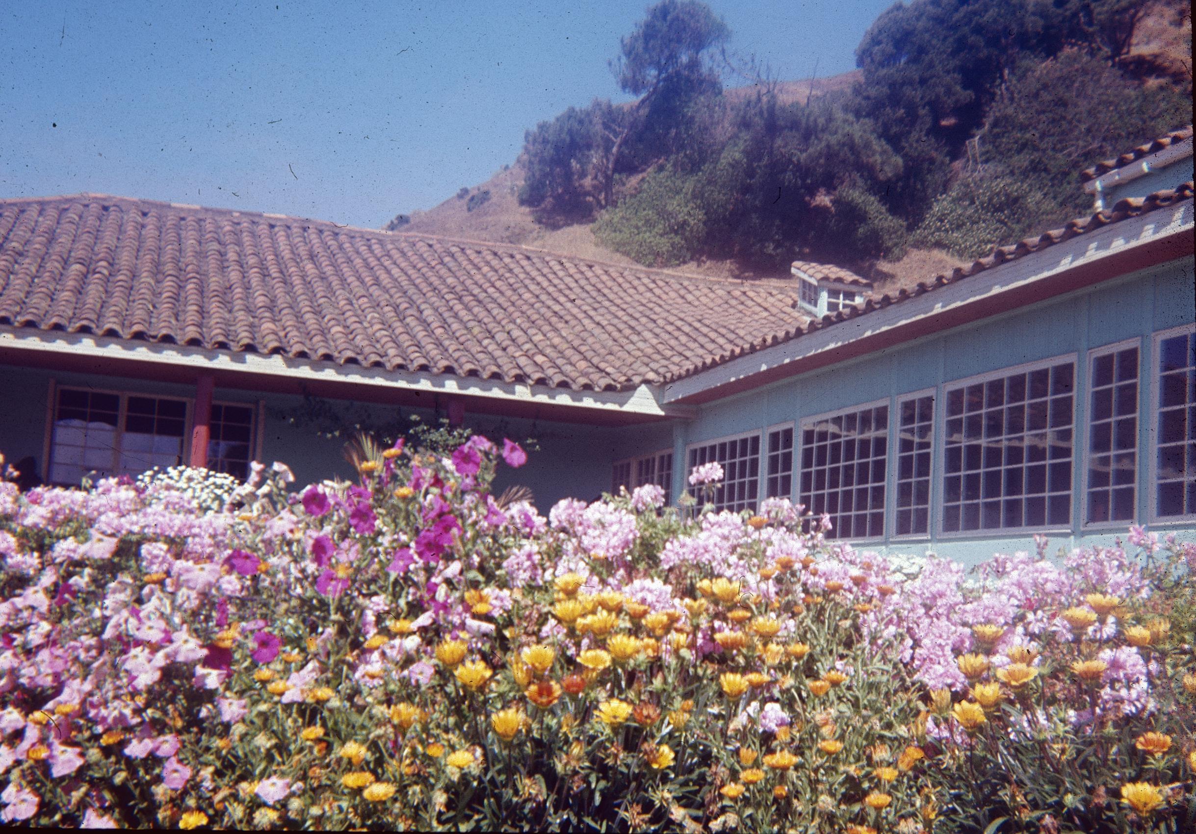Enterreno - Fotos históricas de chile - fotos antiguas de Chile - Casa en pueblo de Llico 1960