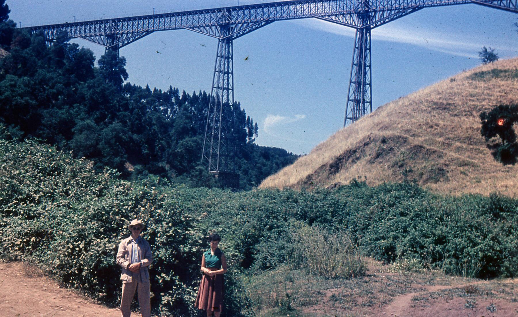 Enterreno - Fotos históricas de chile - fotos antiguas de Chile - Viaducto del Malleco, Enero de 1955