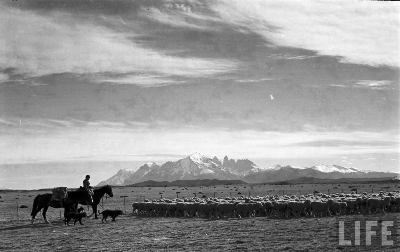 Enterreno - Fotos históricas de chile - fotos antiguas de Chile - Cercanías de Puerto Natales en 1950
