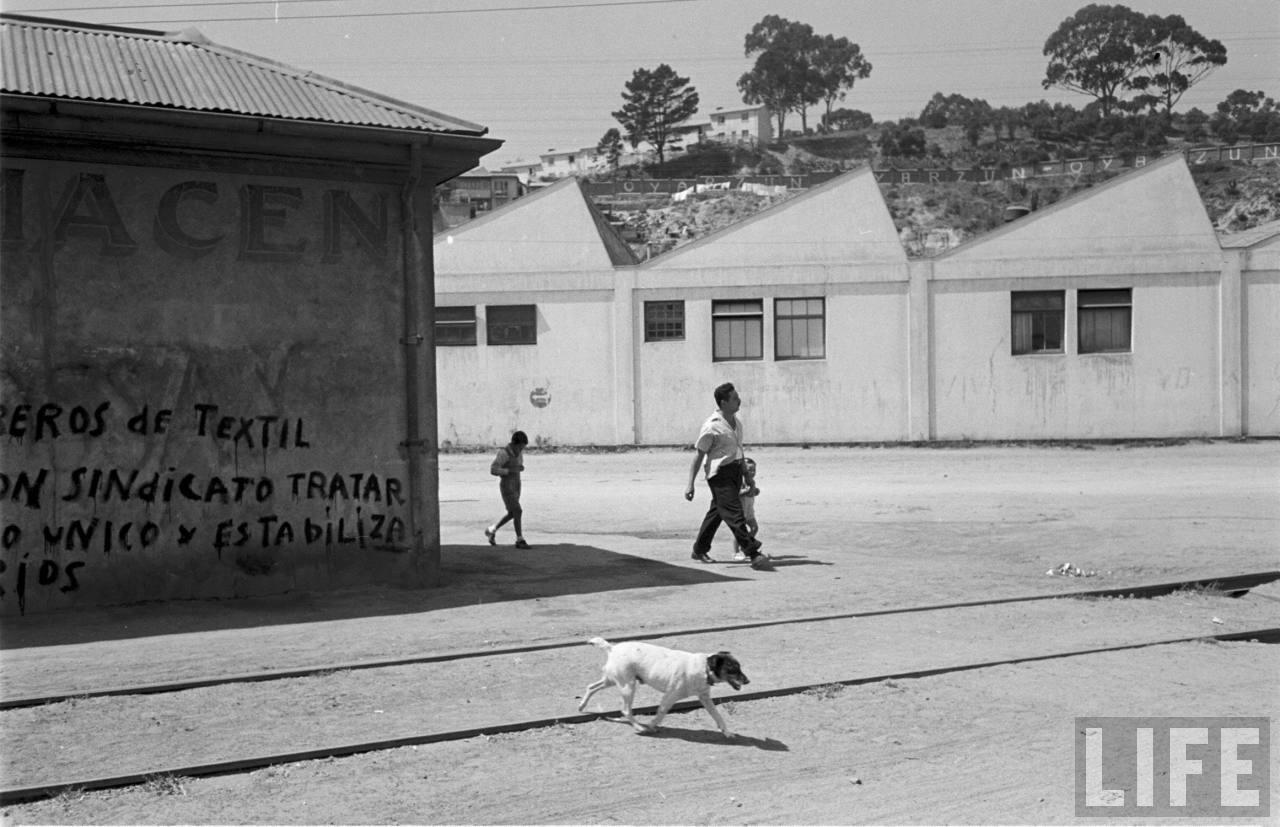 Enterreno - Fotos históricas de chile - fotos antiguas de Chile - Empresa textil de Viña del Mar en 1950