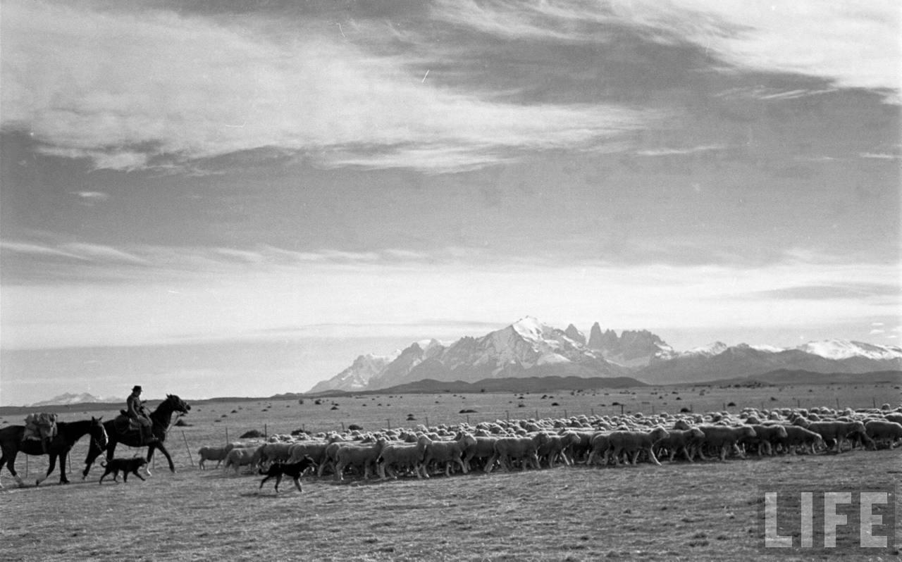Enterreno - Fotos históricas de chile - fotos antiguas de Chile - Torres del Paine en 1950